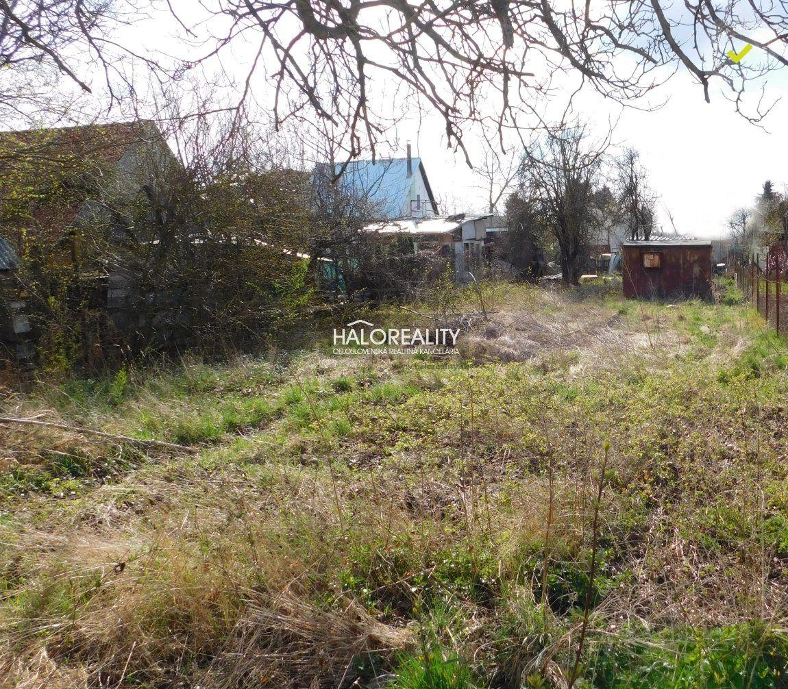 Záhrada-Predaj-Kolárovo-11 500 €