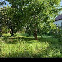 Rekreačný pozemok, Stupava, 811 m², Pôvodný stav