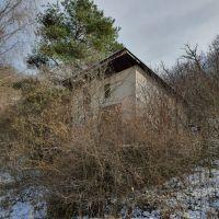 Záhrada, Hlohovec, 2740 m²