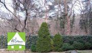 PREDAJ- pol vily -4-izb.byt so záhradou- BA I. -Staré Mesto