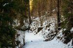rekreačný pozemok - Dolný Kubín - Fotografia 5