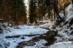 rekreačný pozemok - Dolný Kubín - Fotografia 6