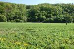 orná pôda - Chocholná-Velčice - Fotografia 2