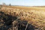 poľnohospodárska pôda - Zvolen - Fotografia 5
