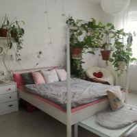 2 izbový byt, Bratislava-Staré Mesto, 59 m², Pôvodný stav