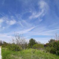 Pre rodinné domy, Nitra, 600 m²