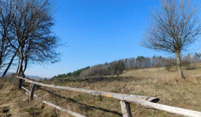 Predaj rozľahlých pozemkov pri Žarnovici
