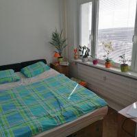 1 izbový byt, Veľký Krtíš, 19 m², Čiastočná rekonštrukcia