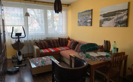 4 izbový byt s pozemkom v centre mesta!