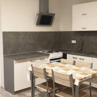 1 izbový byt, Oslany, 43 m², Kompletná rekonštrukcia