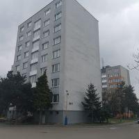 3 izbový byt, Trebišov, 63 m², Pôvodný stav