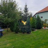 Rodinný dom, Gabčíkovo, 145 m², Kompletná rekonštrukcia