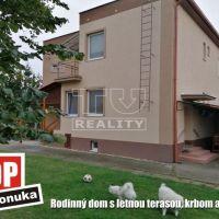 Rodinný dom, Tekovské Lužany, 968 m², Kompletná rekonštrukcia