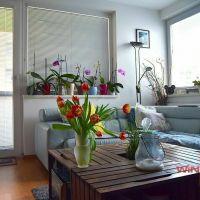 2 izbový byt, Bratislava-Rača, 54 m², Novostavba