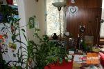 1 izbový byt - Banská Bystrica - Fotografia 8