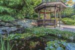 záhrada - Svätý Jur - Fotografia 9