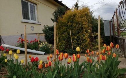 GEMINIBROKER v obci GÖNC ponúka na predaj dom na okamžité bývanie