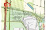 trvalý trávnatý porast - Stupava - Fotografia 2