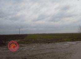 57000 m2 ORNÁ PôDA V OBCI HURBANOVA VES, cca 7 km od Senca