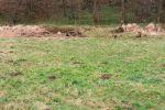 trvalý trávnatý porast - Kokava nad Rimavicou - Fotografia 3