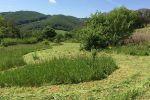 chata - Zemianske Podhradie - Fotografia 20