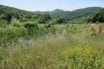 chata - Zemianske Podhradie - Fotografia 27