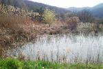 chata - Zemianske Podhradie - Fotografia 8