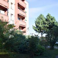 3 izbový byt, Smolenice, 64.50 m², Kompletná rekonštrukcia