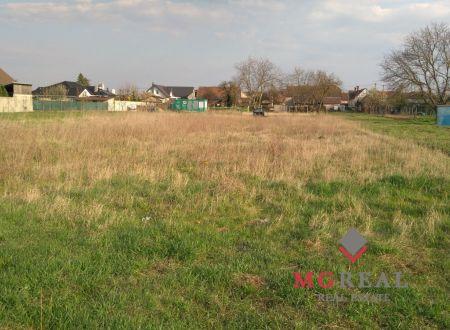 Predaj pozemku v Senici 2000 m2