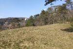 rekreačný pozemok - Modra - Fotografia 5