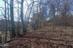 rekreačný pozemok - Modra - Fotografia 9