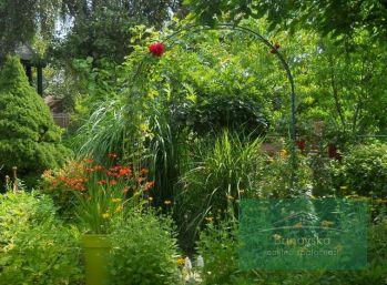Záhrada Bánovce nad Bebravou na predaj
