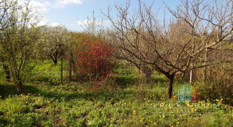 MASTER REAL- EXKLUZÍVNE- Na predaj záhrada 375 m2 osada Návojovce, okres Partizánske