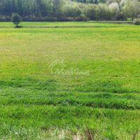 Trvalý trávnatý porast, Brezolupy, 5000 m²