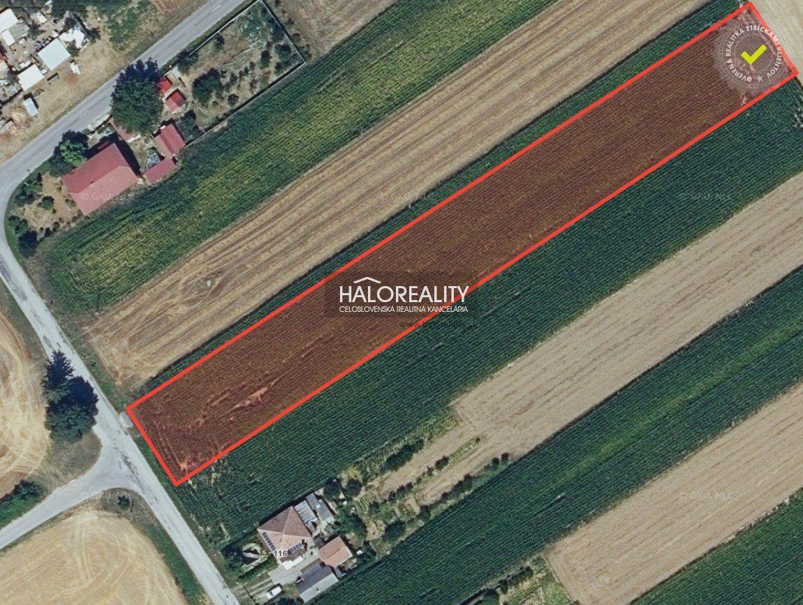 Predaj, pozemok pre rodinný dom 4618 m2 Krtovce - EXKLUZÍVNE HALO REALITY