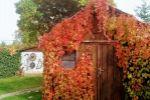 Rodinný dom - Pezinok - Fotografia 11