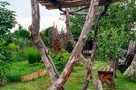 Rodinný dom - Pezinok - Fotografia 13