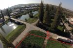 trvalý trávnatý porast - Nitra - Fotografia 3