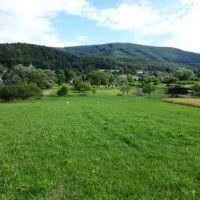 Trvalý trávnatý porast, Buková, 856 m²