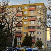 1 izbový byt, Nitra, 37 m², Pôvodný stav