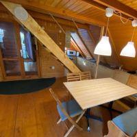 Chata, drevenica, zrub, Bratislava-Nové Mesto, 90 m², Pôvodný stav