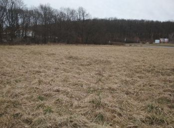 Poľnohospodársky pozemok 15 827m2, Zlaté Moravce -  Volkovce, 700 m od R1