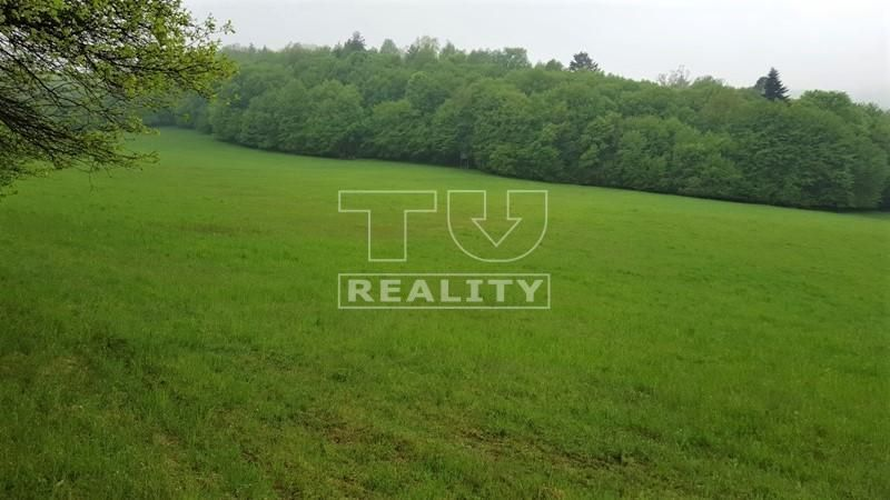 Rekreačný pozemok-Predaj-Púchov-35 000 €