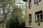 4 izbový byt - Zvolen - Fotografia 8