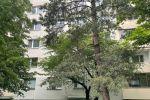 2 izbový byt - Bratislava-Dúbravka - Fotografia 7