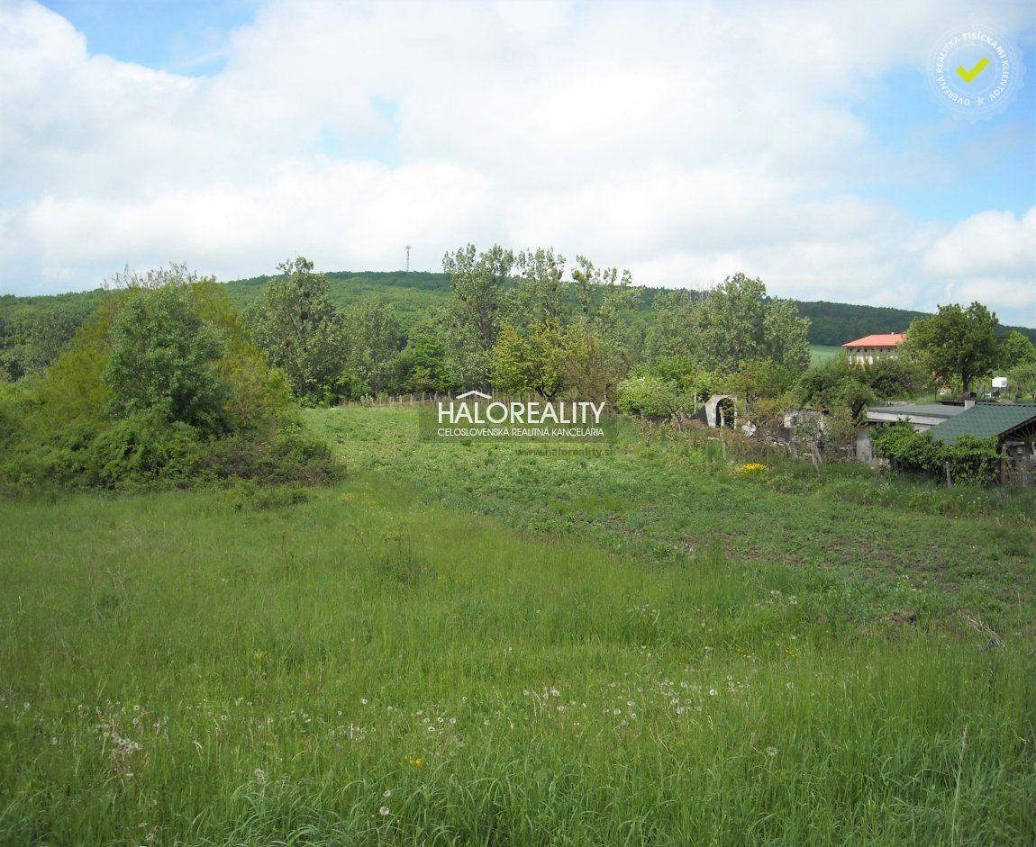 Pozemok pre RD-Predaj-Veľká Tŕňa-23 290 €