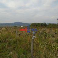 Neobrábaný vinohrad Pezinok, lokalita Za Záhumenicami - 2,85 hektára