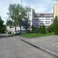 Trvalý trávnatý porast, Banská Bystrica, 18 m²