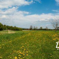 Pre rodinné domy, Borčice, 1418 m²