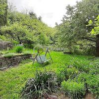 Záhrada, Košice-Krásna, 646 m²